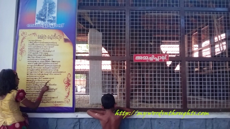 Significance of the famous Ammachi Plavu situated in Sree Krishna