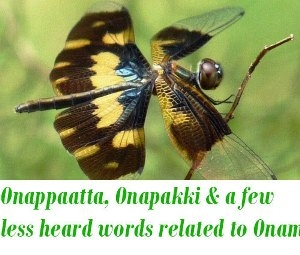 less heard words related to Onam
