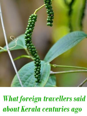foreign travellers in Kerala